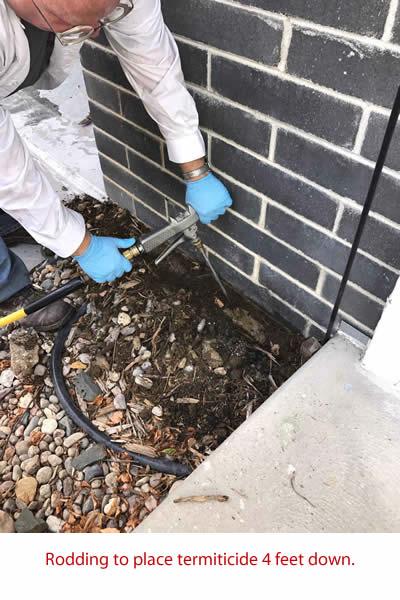 TNT Termite rodding 4 feet down