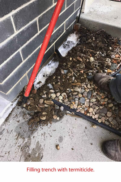 TNT Termite trench filled with termiticide
